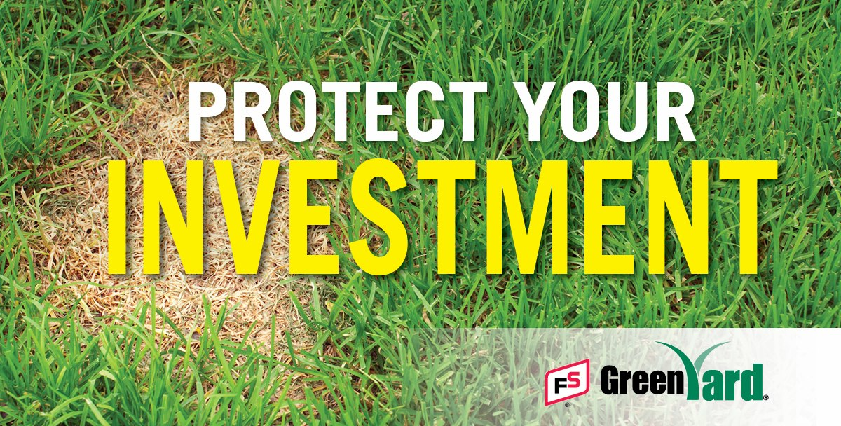 GRAINCO FS > Products & Services > Turf